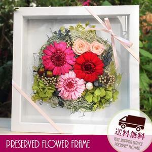 プリザーブドフラワー 壁掛け 誕生日 結婚祝い 花 ギフト プレゼント 額 木製 フレーム ガーベラ lpm0034