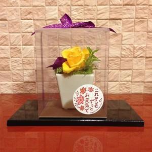 なごみ/敬老の日/誕生日/母の日/お祝/お正月のお飾りに